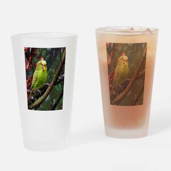 Cute Yellow budgie Drinking Glass