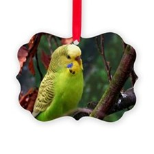 Cute Parrot Ornament