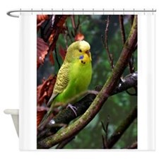 Funny Lovebirds Shower Curtain