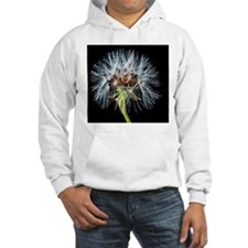 Unique Dandelion seeds blowing in the wind Hoodie