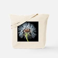 Cute Dandelion seeds blowing in the wind Tote Bag