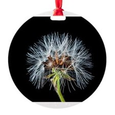 Cool Dandelion seeds blowing in the wind Ornament