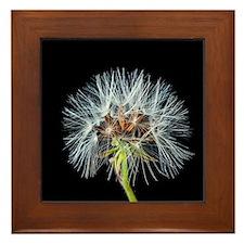 Unique Blowing dandelion Framed Tile