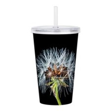 Unique Dandelion seeds blowing in the wind Acrylic Double-wall Tumbler