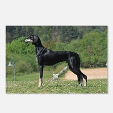 Saluki Postcards (Package of 8)