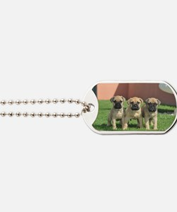 Bullmastiff Puppies Dog Tags
