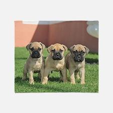 Bullmastiff Puppies Throw Blanket