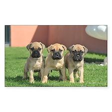 Bullmastiff Puppies Decal