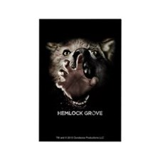 Hemlock Grove Inside Out Magnets