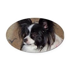 Papillon Side pose Oval Car Magnet