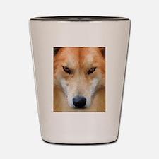 Cool Dingo Shot Glass