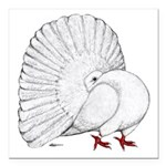 Fantail White Pigeon Square Car Magnet 3