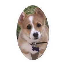 Corgi Oval Car Magnet