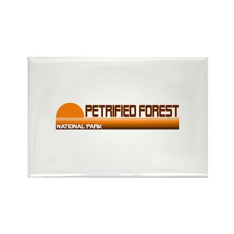Petrified Forest National Par Rectangle Magnet (10