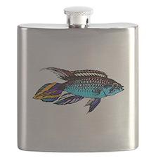 Dwarf Cichlid Flask