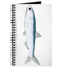 California Northern Anchovy Journal