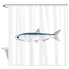 California Northern Anchovy Shower Curtain