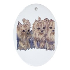 3 Little Yorkies Oval Ornament