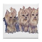 3 Little Yorkies Tile Coaster