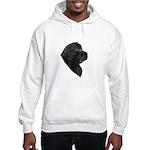 A Gorgeous Newfoundland Hooded Sweatshirt