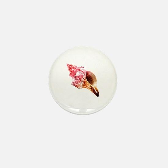 Cool Conch Mini Button