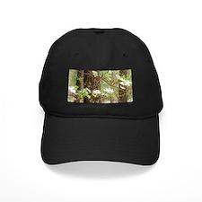Cute Yosemite meadows Baseball Hat