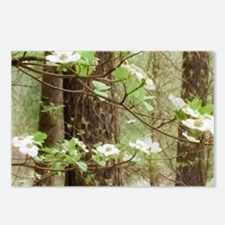 Cute Dogwood blossoms Postcards (Package of 8)