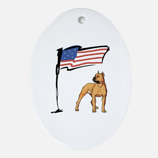 USA Pit Oval Ornament