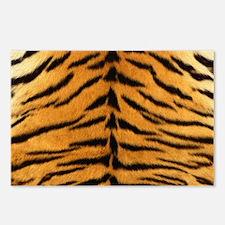 Tiger Fur Print Postcards (Package of 8)
