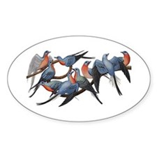 Passenger Pigeons Decal