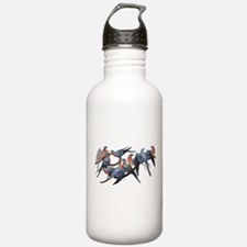 Passenger Pigeons Water Bottle