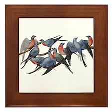 Passenger Pigeons Framed Tile