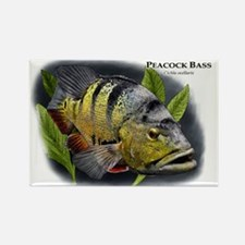 Peacock Bass Rectangle Magnet
