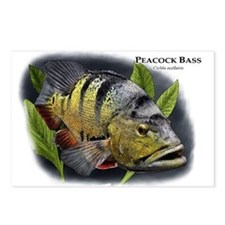 Peacock Bass Postcards (Package of 8)
