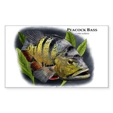 Peacock Bass Decal
