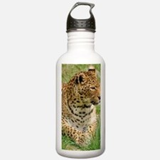 Cute Animal texture Water Bottle