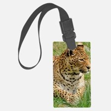 Cute Africa safari Luggage Tag