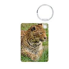 Cute Animal texture Keychains