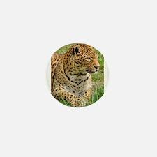 Cute Leopard print Mini Button