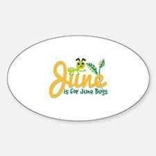 June Bug Decal