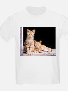 Barn Kitties T-Shirt
