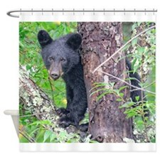 Black Bear Cub in a Cherry Tree Shower Curtain