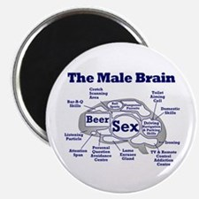 The Thinking Man's Magnet