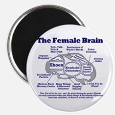 The Thinking Woman's Magnet