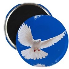 Purity Dove Magnets
