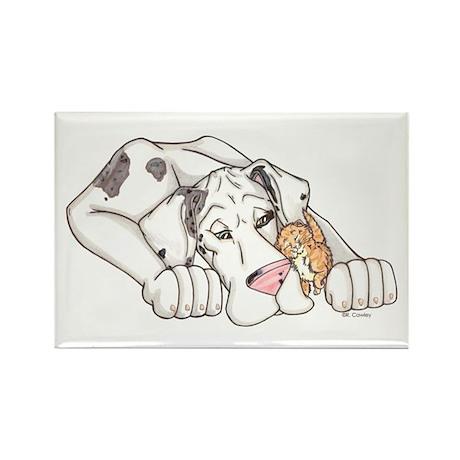NMrlqn Kitten love Rectangle Magnet (10 pack)