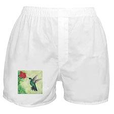 Cute Hummingbird Boxer Shorts