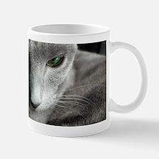 DSCN2844_4 Mugs