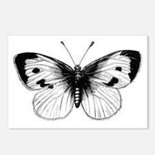 Black and White Butterfly Postcards (Package of 8)