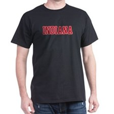 Unique Indiana hoosiers T-Shirt